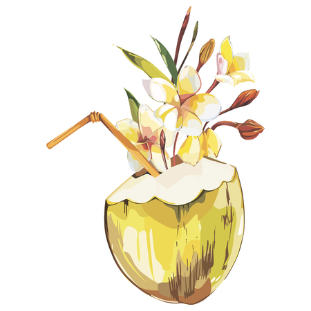 Coconut hand drawn sketch with plumeria flowers. Watercolor tropical food illustration. Isolated on white background.