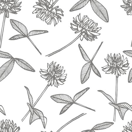 Clover plants. Botanical illustration. Good for cosmetics, medicine, treating, aromatherapy, nursing, package design, field bouquet. Seamless patterns. Imagens