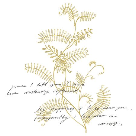 Branch of wild plant Vicia cracca. Tufted Vetch or Vicia cracca, vintage engraved illustration. Botanical illustration. Good for cosmetics, medicine, treating, aromatherapy, nursing, package design, field bouquet. Handwritten abstract text wallpaper. Imitation of a abstract vintage lettering