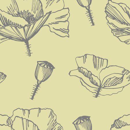 Poppy flowers. Botanical plant illustration. Vintage medicinal herbs sketch set of ink hand drawn medical herbs and plants sketch. Seamless patterns.