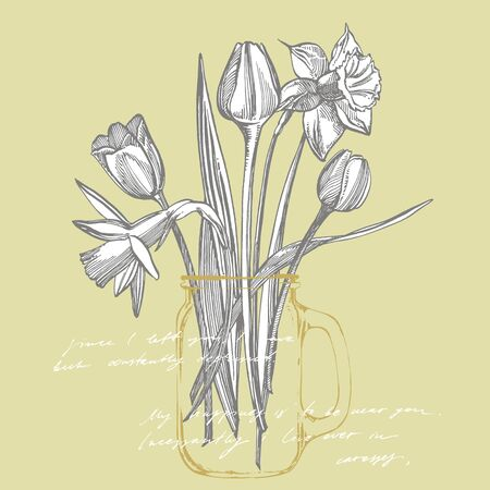 Tulips and Narcissus flowers bouquet isolated on white background. Set of drawing cornflowers, floral elements, hand drawn botanical illustration. Handwritten abstract text. Stok Fotoğraf