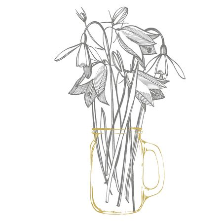 Bells and Snowdrops flowers. Bouquet of hand drawn flowers and herbs. Botanical plant illustration