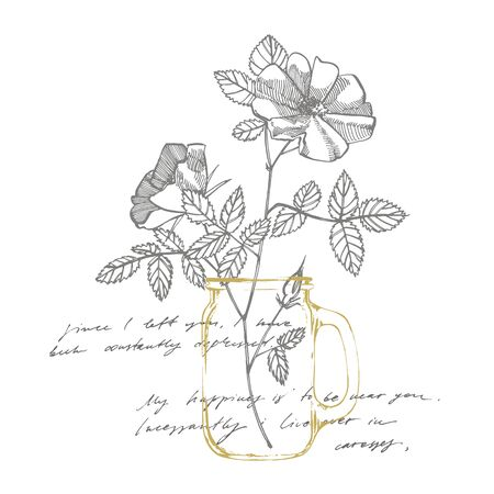 Wild rose flowers drawing and sketch illustrations. Decorative floral set for fabric, textile, wrapping paper, card, invitation, wallpaper, web design. Handwritten abstract text.