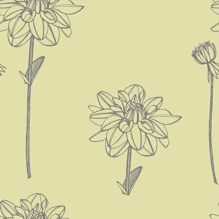 Hand-drawn ink dahlias. Floral elements. Graphic flowers illustrations. Botanical plant illustration. Vintage medicinal herbs sketch set of ink hand drawn medical herbs and plants sketch. Seamless patterns