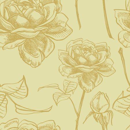 Roses. Hand drawn flower set illustrations. Botanical plant illustration. Vintage medicinal herbs sketch set of ink hand drawn medical herbs and plants sketch. Seamless patterns