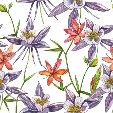 Double Columbine flowers. Seamless pattern. Collection of hand drawn flowers and plants. Watercolor set of flowers and leaves, hand drawn floral illustration isolated on a white background. Botanical art.