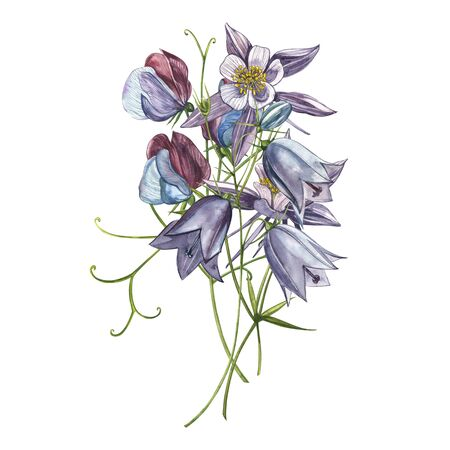 Bellflower blossoms, leaves and bouquets. Watercolor set of flowers and leaves, hand drawn floral illustration isolated on a white background. Collection garden and wild herb, flowers, branches. Botanical art.