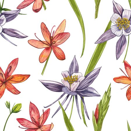 Kafir Lilies flowers. Seamless patterns. Collection of hand drawn flowers and plants. Botany. Set. Vintage flowers. Watercolor set of flowers and leaves, hand drawn floral illustration isolated on a white background. Botanical art.