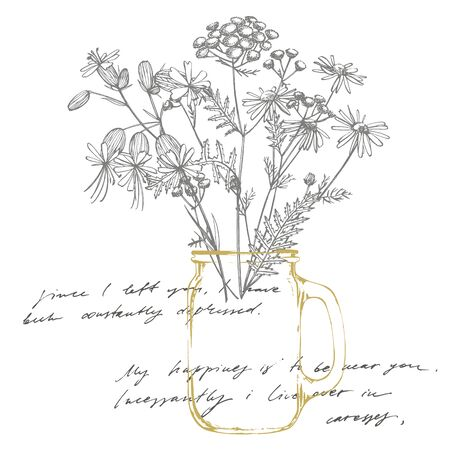 Tansy and Chamomile. Bouquet of hand drawn flowers and herbs. Botanical plant illustration. Handwritten abstract text wallpaper.