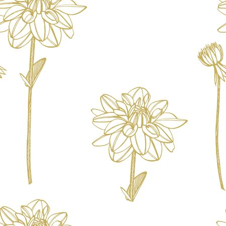 Hand-drawn ink dahlias. Floral elements. Graphic flowers illustrations. Botanical plant illustration. Vintage medicinal herbs sketch set of ink hand drawn medical herbs and plants sketch. Seamless pat