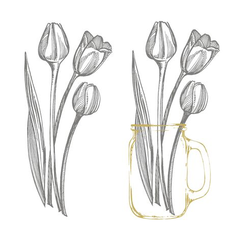 Tulip flower graphic sketch illustration. Botanical plant illustration. Vintage medicinal herbs sketch set of ink hand drawn medical herbs and plants sketch Archivio Fotografico - 131823805