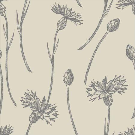Blaue Kornblume-Kraut- oder Junggesellen-Knopfblumenblumenstrauß lokalisiert auf weißem Hintergrund. Satz von Zeichnungskornblumen, florale Elemente, handgezeichnete botanische Illustration. Nahtloses Muster