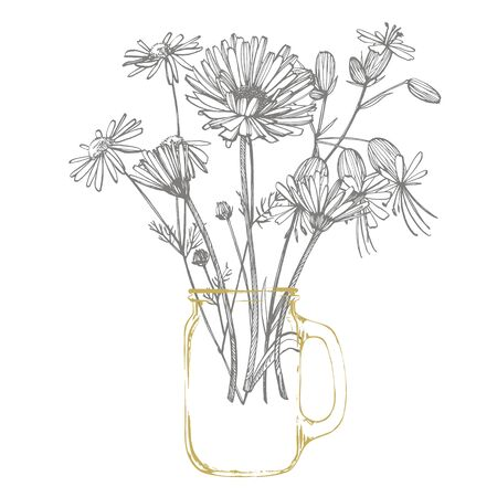 Tansy and Chamomile. Bouquet of hand drawn flowers and herbs. Botanical plant illustration. Handwritten abstract text wallpaper Ilustracja