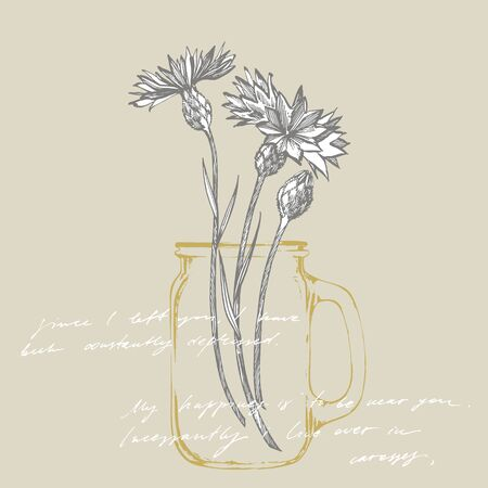Blue Cornflower Herb or bachelor button flower bouquet isolated on white background. Set of drawing cornflowers, floral elements, hand drawn botanical illustration  イラスト・ベクター素材
