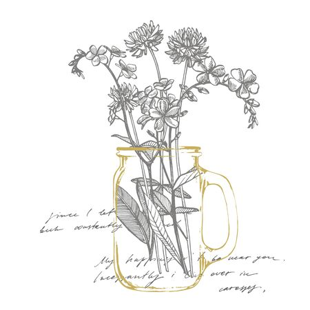 Branch of wild plant Forget-me-not and Clover. Vintage engraved illustration. Bouquet of hand drawn flowers and herbs. Botanical plant illustration. Handwritten abstract text