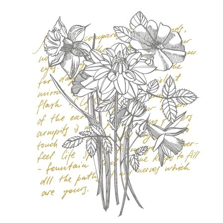 Roses and Dahlias flowers bouquet isolated on white background. Set of drawing cornflowers, floral elements, hand drawn botanical illustration. Handwritten abstract text Illustration