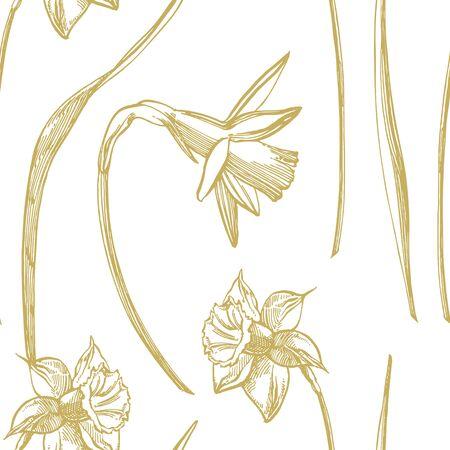 Narzissen- oder Narzissenblumenzeichnungen. Sammlung von handgezeichneten schwarzen und weißen Narzissen. Handgezeichnete botanische Illustrationen. Nahtlose Muster Vektorgrafik