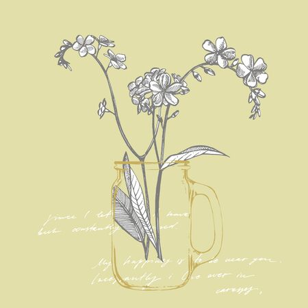 Forget-me-not flowers. Botanical illustration. Good for cosmetics, medicine, treating, aromatherapy, nursing, package design, field bouquet. Hand drawn wild hay flowers