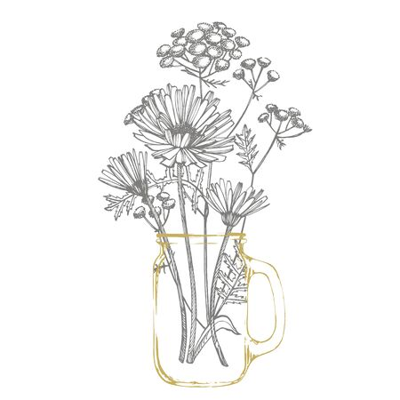 Tansy and Chamomile. Bouquet of hand drawn flowers and herbs. Botanical plant illustration. Handwritten abstract text wallpaper Illustration