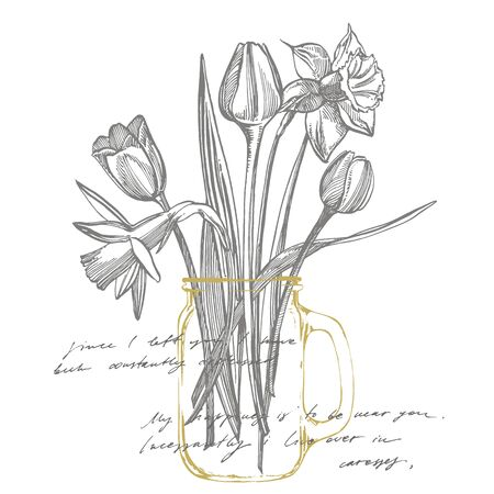 Tulips and Narcissus flowers bouquet isolated on white background. Set of drawing cornflowers, floral elements, hand drawn botanical illustration. Handwritten abstract text Illustration