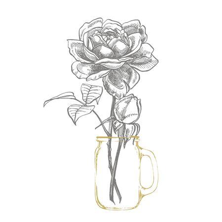 Roses. Hand drawn flower set illustrations. Botanical plant illustration. Vintage medicinal herbs sketch set of ink hand drawn medical herbs and plants sketch. Vetores