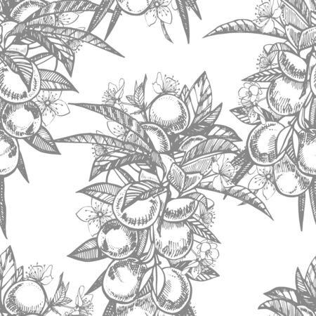 Plums hand drawn illustration. Ink sketch. Hand drawn illustration. Seamless pattern. Healthy organic food. Farm market products. Best for package design. Banque d'images - 133613025