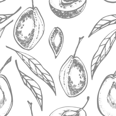 Plums hand drawn illustration. Ink sketch. Hand drawn illustration. Seamless pattern. Healthy organic food. Farm market products. Best for package design. Banque d'images - 133613028