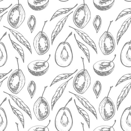 Plums hand drawn illustration. Ink sketch. Hand drawn illustration. Seamless pattern. Healthy organic food. Farm market products. Best for package design. Banque d'images - 133613033
