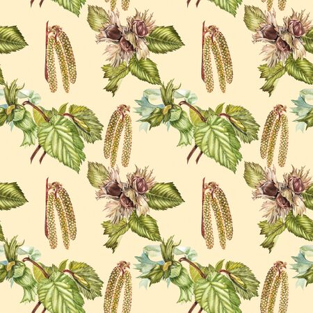 Watercolor realistic illustration of hazelnuts. Set of watercolor hazelnuts elements, hand painted isolated on a white background. Seamless pattern. Banque d'images - 133613096