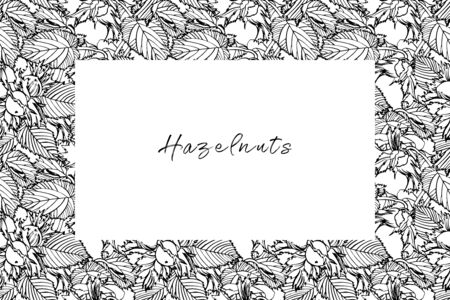 Realistic illustration of hazelnuts. Set of graphic hazelnuts elements, hand painted isolated on a white background. Standard-Bild - 134859136