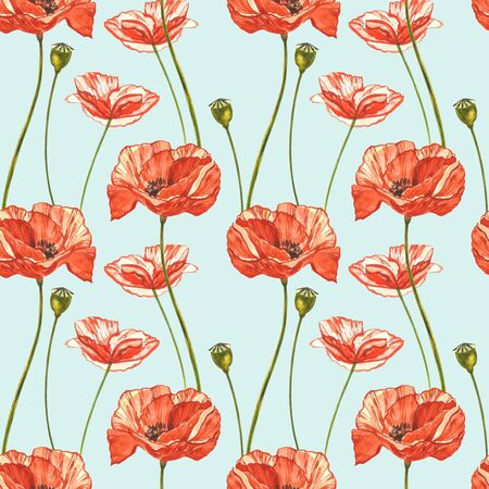 Watercolor red poppies. Seamless patterns. Wild flower set isolated on white. Botanical watercolor illustration, red poppies bouquet, rustic poppy flowers.