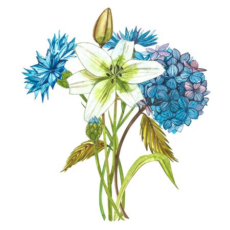 Watercolor hidrungea. Wild flower set isolated on white. Botanical watercolor illustration, hidrungea bouquet, rustic flowers