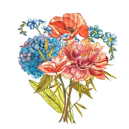 Watercolor bouquet with Piones, Forget-me-not flowers, Poppy and Hidrungea. Wild flower set isolated on white. Botanical watercolor illustration, rustic flowers. Good for cosmetics, medicine, treating, aromatherapy, nursing, package design, field bouquet. Hand drawn wild hay flowers