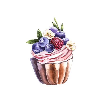 Watercolor Blueberry cake. Botanical illustration. Hand drawn watercolor painting blueberry on white background. 版權商用圖片
