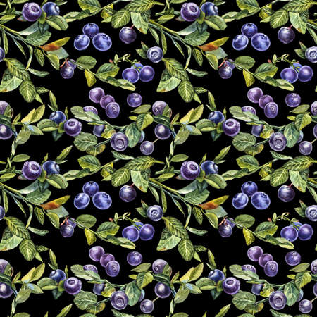 Blueberry. Seamless patterns. Watercolor botanical illustration. Hand drawn watercolor painting blueberry on white background. 版權商用圖片