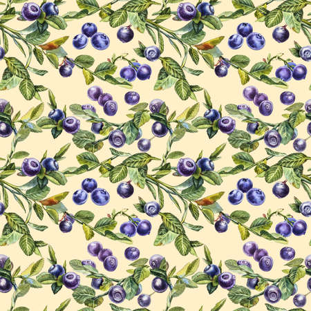 Blueberry. Seamless patterns. Watercolor botanical illustration. Hand drawn watercolor painting blueberry on white background. 스톡 콘텐츠
