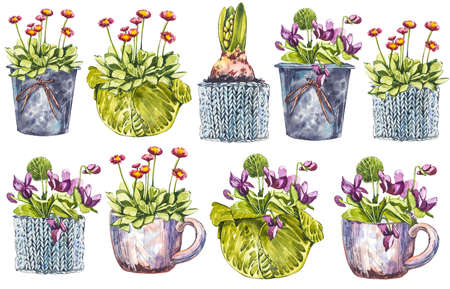 Watercolor spring flowers in flower pot. Hand draw watercolor illustrations on white background. Easter collection.