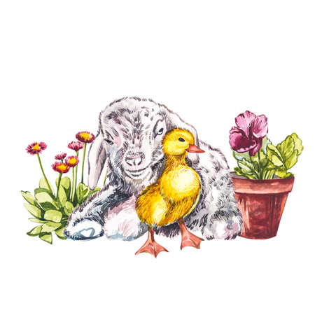 Duckling and goat watercolor illustration. Easter set. Hand painted card with traditional symbols isolated on white background.