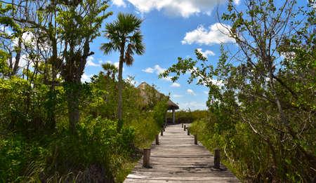 Landscape Stok Fotoğraf