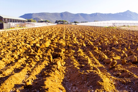 Plowed fields and green house