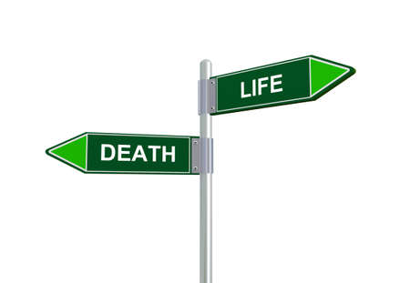 difficult decision: 3d illustration of death and life road sign