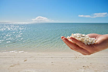 western australia: Shell Beach - Western Australia Stock Photo