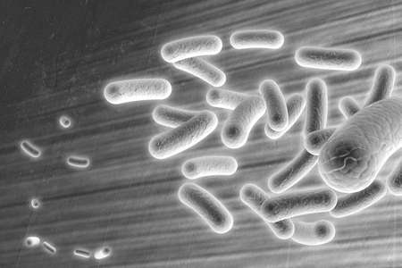 Microscopic Bacteria Abstract Background