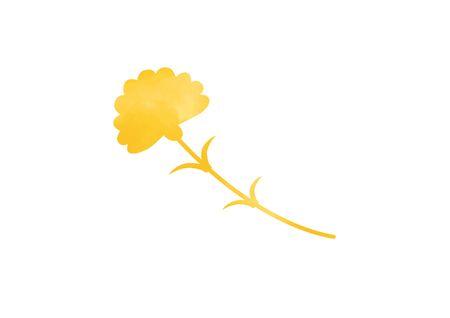 Yellow carnation illustration