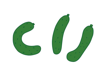 Illustration of crooked cucumber and straight cucumber 向量圖像