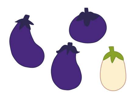 Illustrations of various eggplants