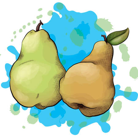 A vector illustration of a green and brown pear in an ink and watercolor style on a splattered background. Illusztráció