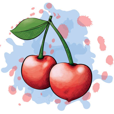 cross hatching: A vector illustration of two cherries in an ink and watercolor style on a splattered background. Illustration