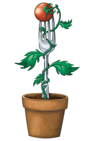 A potted tomato vine winds up a fork with a cherry tomato on top in a hand drawn ink and watercolor style.