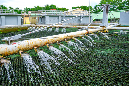 trickling: Trickling Filter Spraying Wastewater for Treatment at Sewage Plant